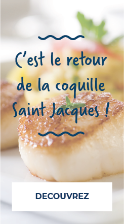 Ô'Poisson retour de la Saint Jacques